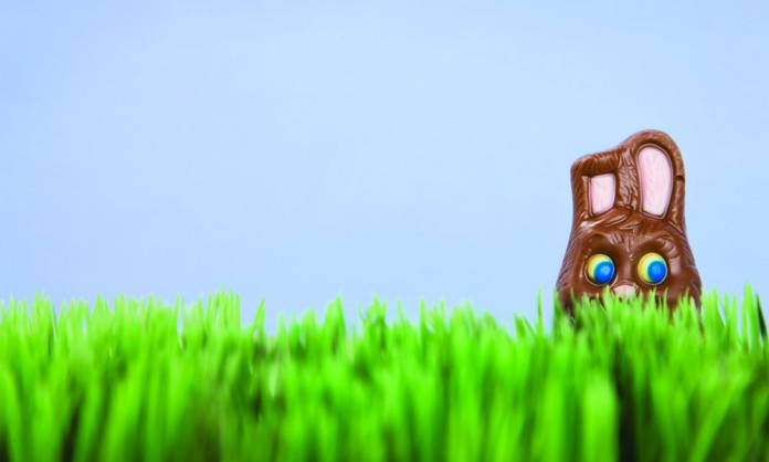 chocolate bunny in grass