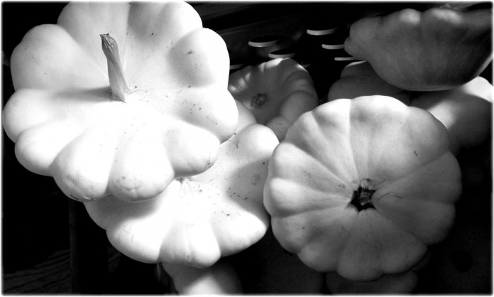 black and white gourds