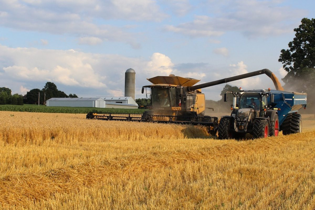 Data Reveals Farming Is Most Common Job In Only Two States
