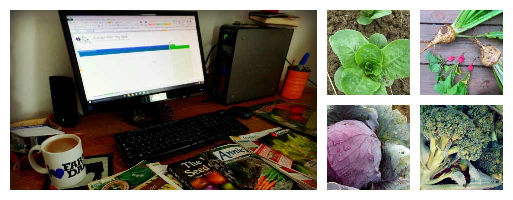 3 ways to plan your garden: paper, virtual or template - Farm and Dairy