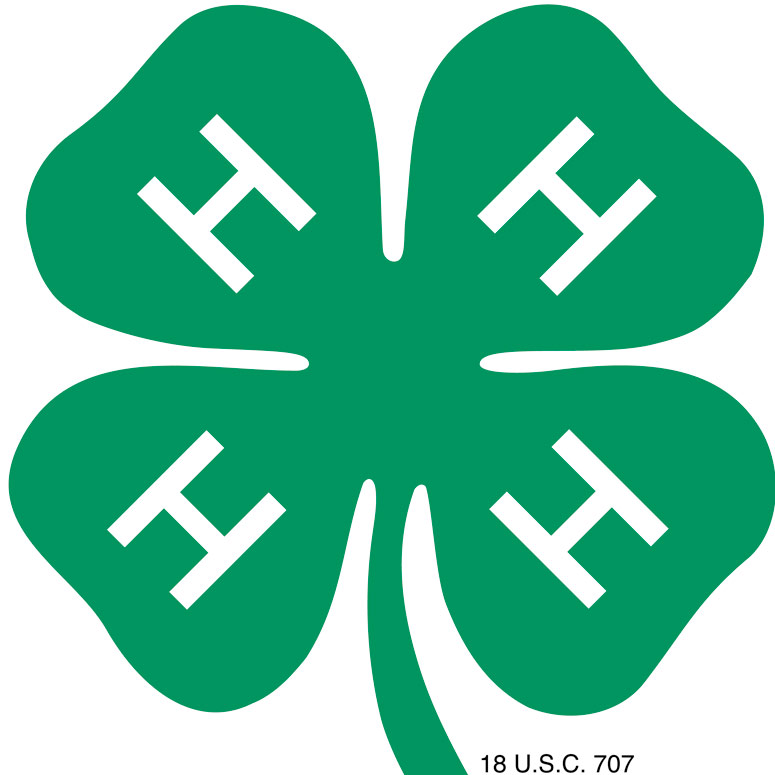 Auctions In Ohio >> Garden club supports 4-H with Paper Clover donation - Farm and Dairy