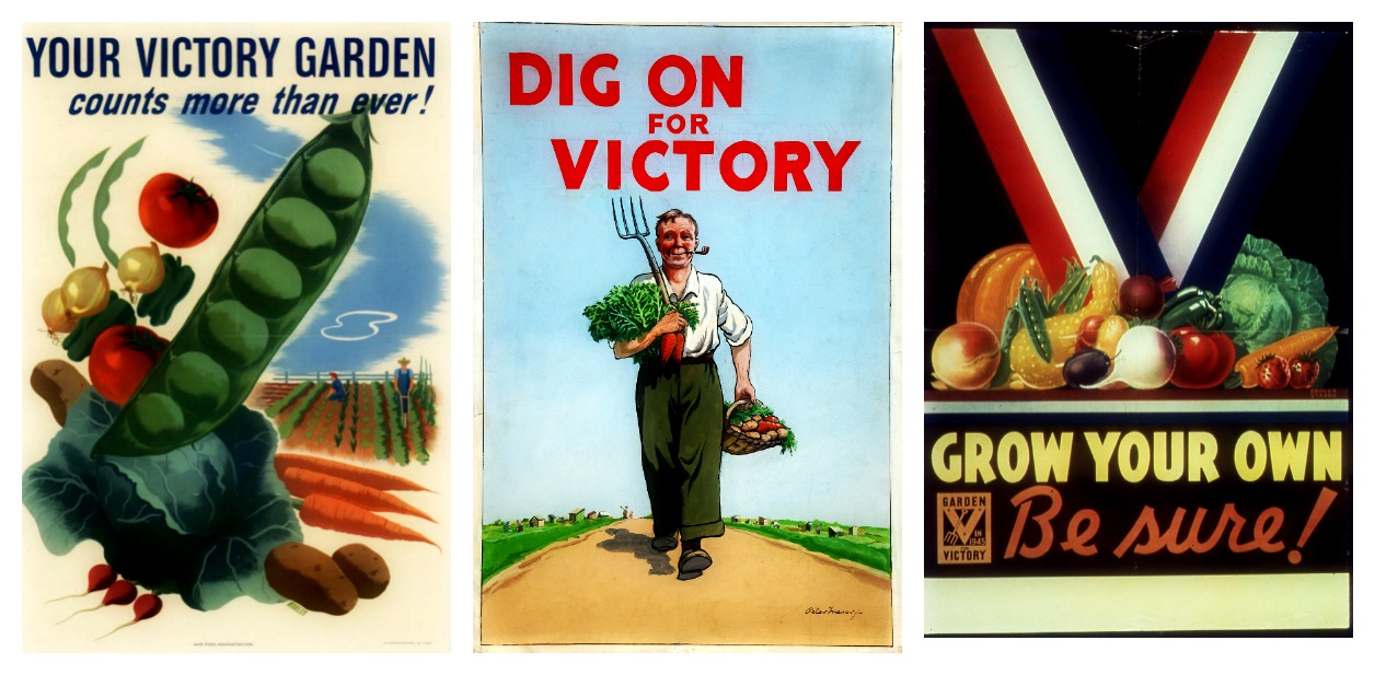 plant a victory garden farm and dairy - The Victory Garden