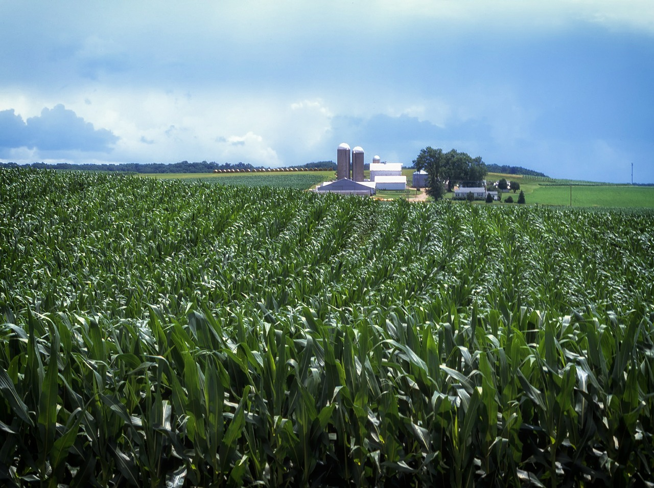 Nearly 2800 Acres Added To Farmland Preservation In Pa