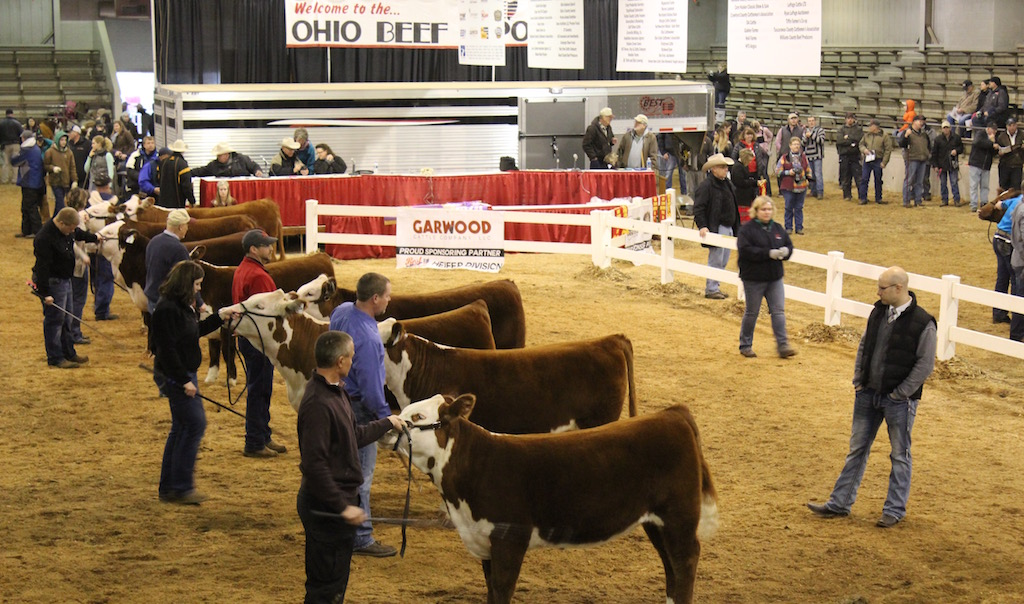 Ohio Beef Expo has a family focus - Farm and Dairy