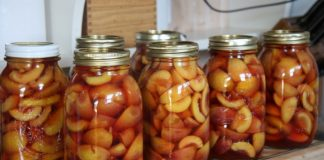 canned nectarines