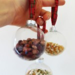 Seed ball ornaments