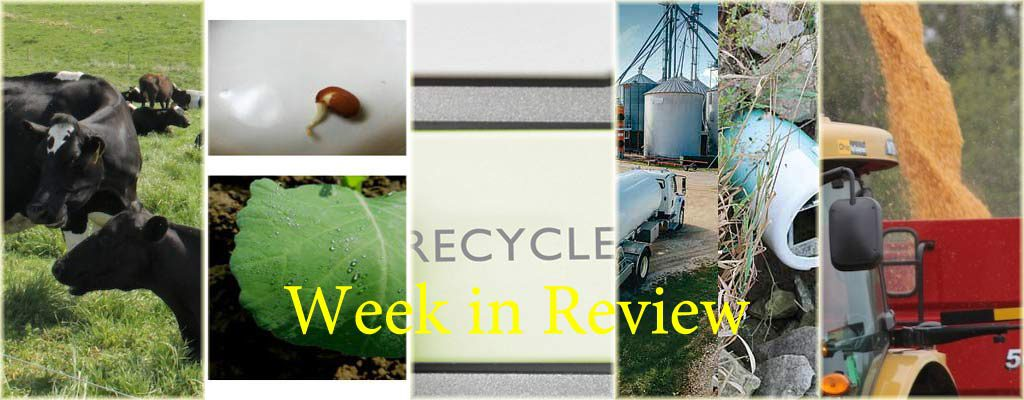 Week in Review 1/3