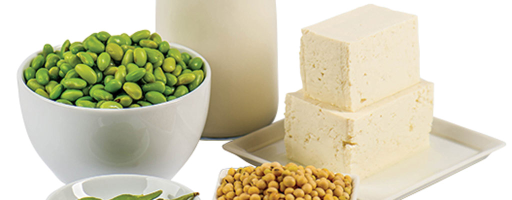 Soyfoods infographic