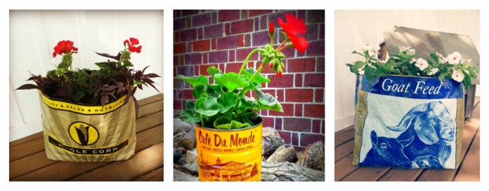 container garden collage