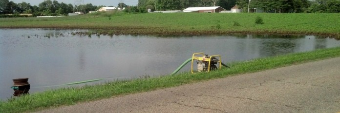 flooded soybeans/Stan Smith photo