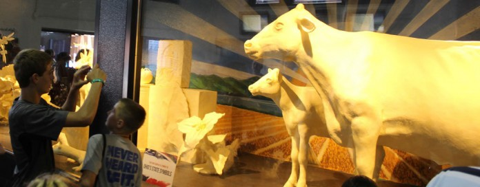 2014 Ohio State Fair butter cow