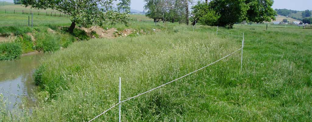 stream exclusion fencing
