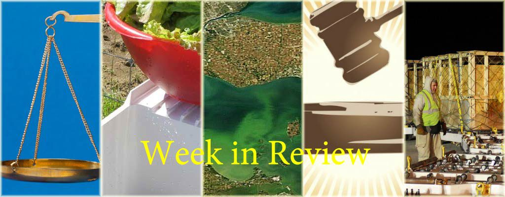 Week in Review 7/18