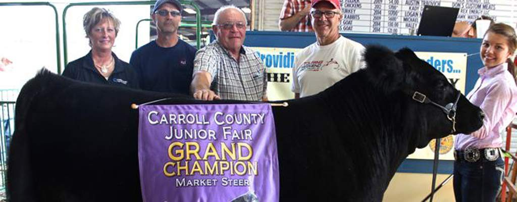 Carroll County 2015 Grand Champion Market Steer