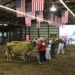 Dairy Show at Portage Co. Fair