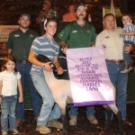 Butler County reserve champion lamb