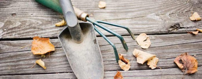 garden tools and fall leaves