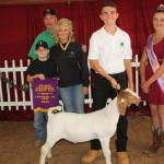 Lawrence Co. grand champion goat