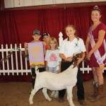 Lawrence Co. reserve champion goat