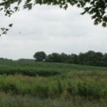 Musser farm and subsidence