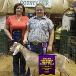Canfield gr ch dairy goat