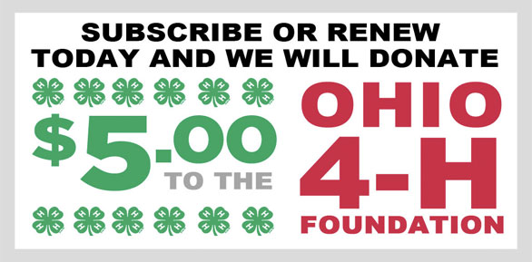 4H donate banner