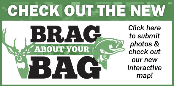 Brag About Your Bag homepage promo