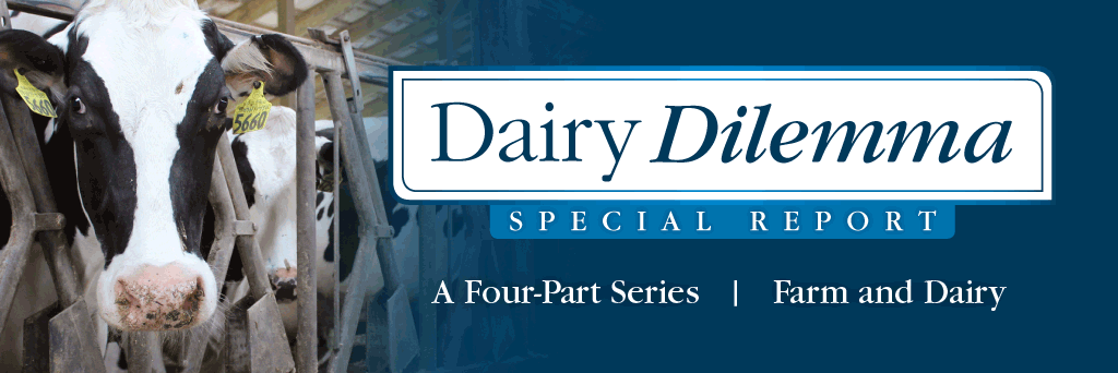 Dairy Dilemma Banner Corrected