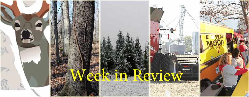 week in review collage for Dec. 5, 2015