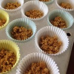 cupcake liners with graham crackers