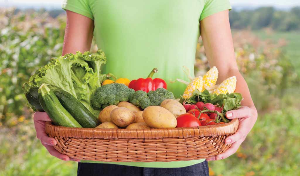 What Is Community Supported Agriculture