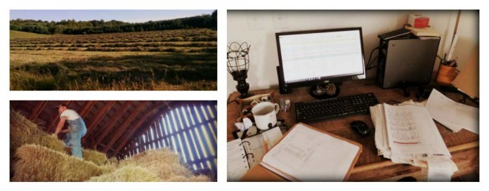 farm business collage