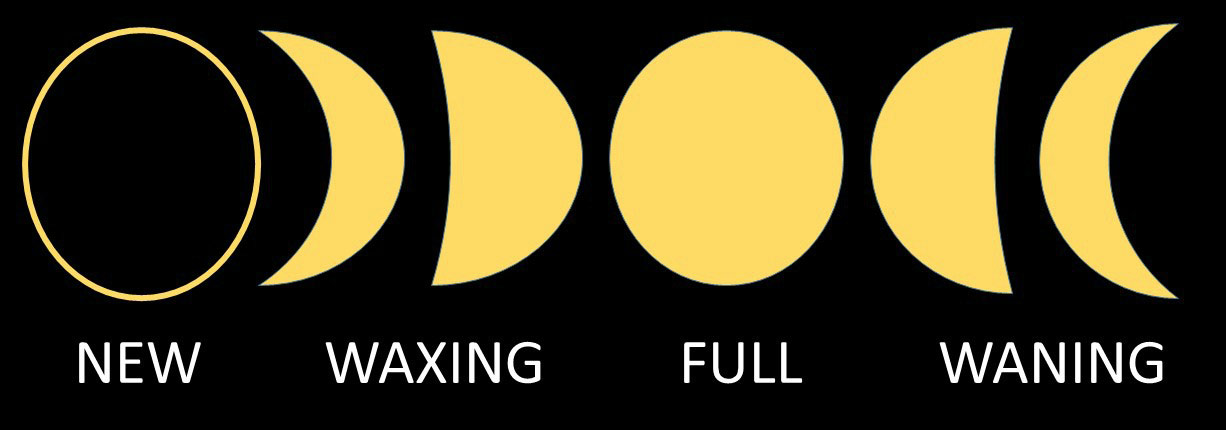 moon phases graphic