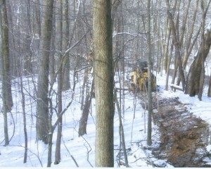 Trail clearing.