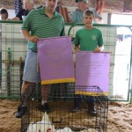 Reserve champions chicken pen