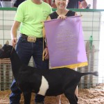 Reserve champion dairy goat