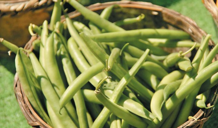 green beans in basket