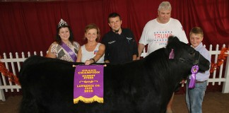 Lawrence County grand champion steer