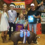 Canfield grand champion hog