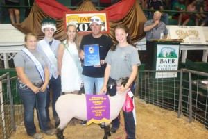 Canfield grand champion lamb