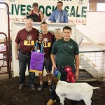 Geauga grand champion goat