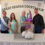 Geauga grand champion rabbit