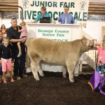 Geauga grand champion steer