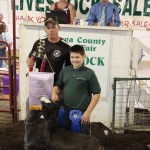 Geauga reserve champion goat