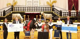 World Dairy Expo supreme