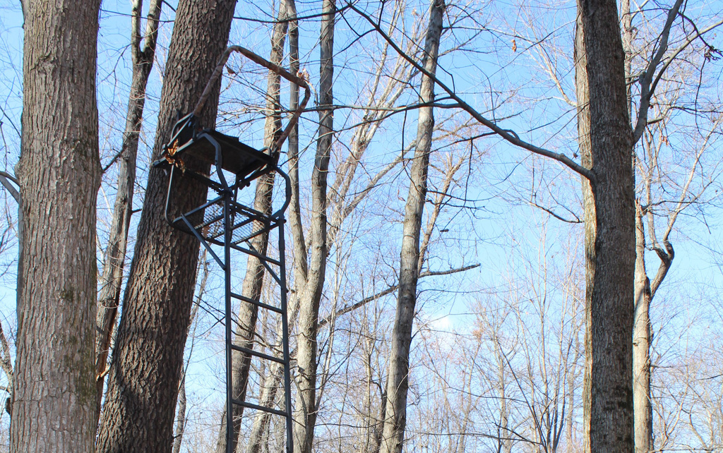 How To Minimize The Risks Of Using A Tree Stand Farm And
