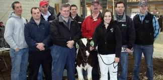 Holstein brings $32,000 at sale