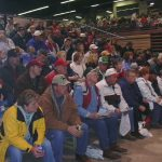 2006 sale crowd