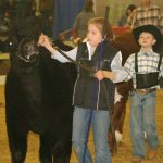 2009 Ohio Beef Expo showmanship