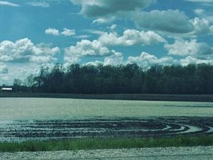 darke county field flooded